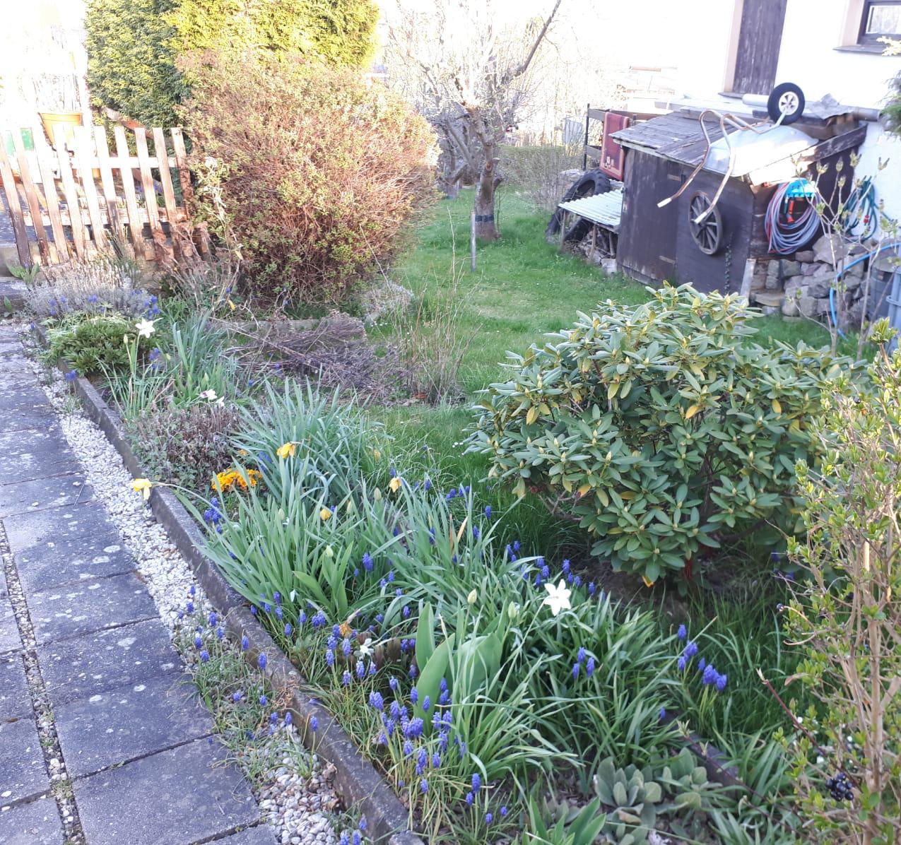 Frühling im Garten, Foto: Birgit Hempel