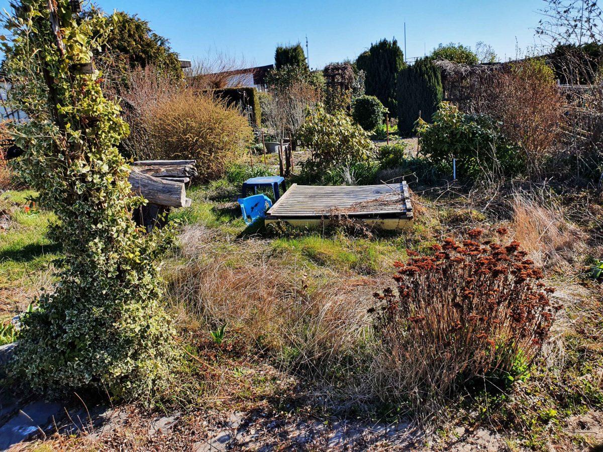 So zugewuchert empfing uns der Garten, Foto: Maike Steuer
