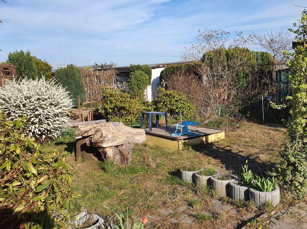 Jetzt ist unser Rasen wieder schnittig, Foto: Maike Steuer