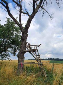 Besondere Ausblicke gen Niederhain, Foto: Maike Steuer